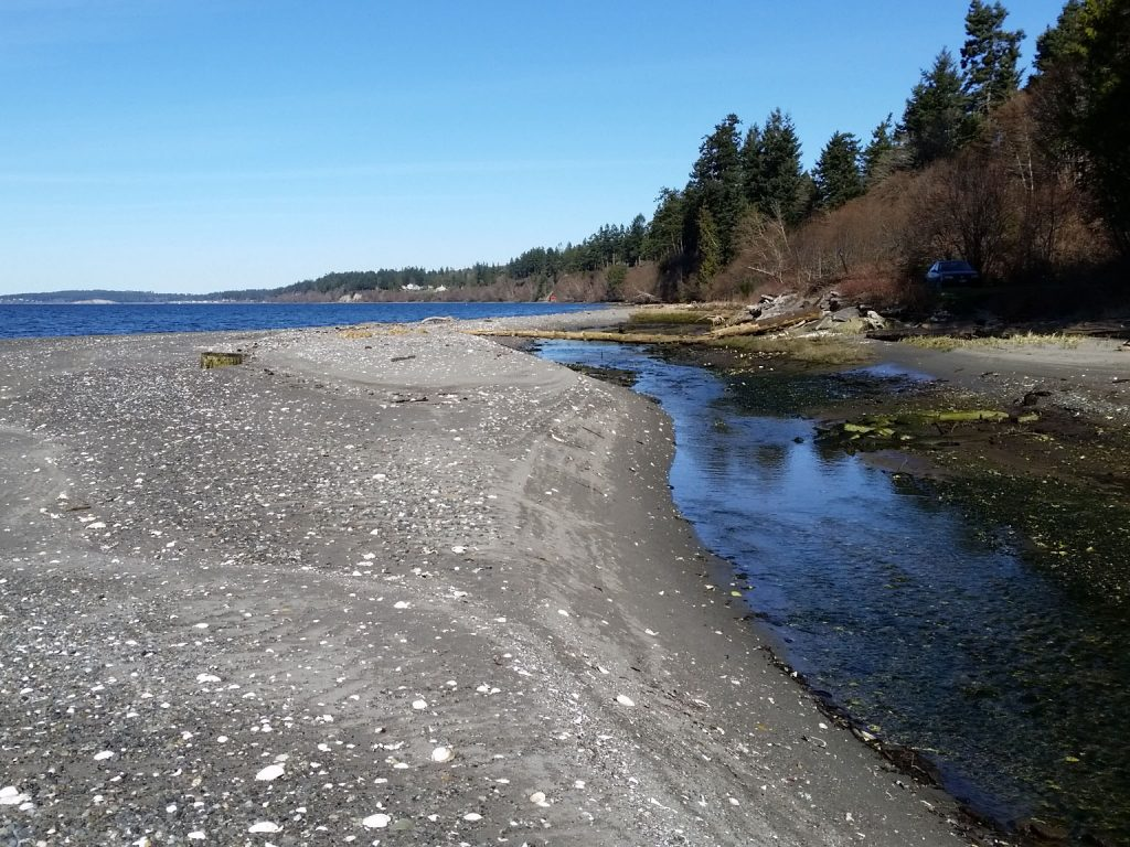 port gamble Geotechnical Assessment and Shoreline Management Study fain environmental geomorphology project